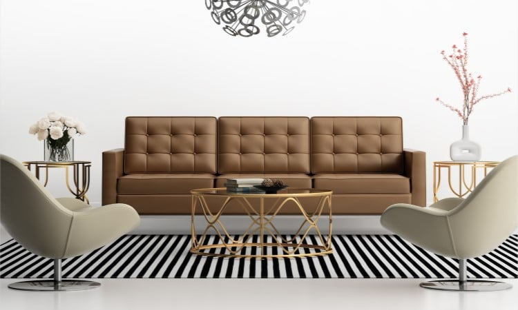 coconut oil on leather couch